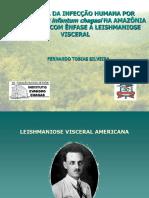Patogenia Da Infecção Humana Por l. (l.) i. Chagasi Na Amazônia Brasileira