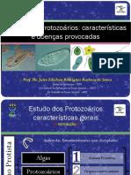 Aula 02 Protozoário - caracteristicas gerais e doenças