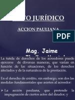Accion Pauliana