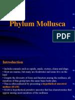 8-Mollusca
