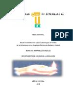 Estudio de Satisfacción Laboral.pdf