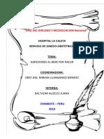 Agresiones Al Bebe Por Nacer HLC Baltazar Informe (1)(1)
