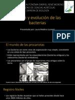 origenyevolucindelasbacterias-171004204754