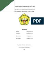 377749818-Makalah-Penkes-Menopause-Pada-Lansia.docx