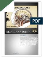 NEUROANATOMIA.docx