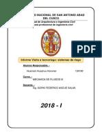 INFORME TECNORIEGO.docx