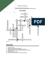 Crucigrama Columna
