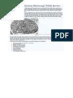 Human Umbilical Vein Endothelial Cells (HUVECs) Tube Formation Assay