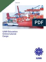 IUMI Tutorial Cargo 180813 Digital