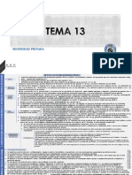 ESQUEMA TEMA 13 PN.pdf