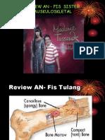 Review an Fis Sistem Muskuloskletal