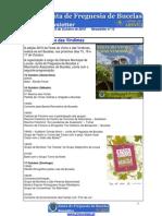 Newsletter nº 13