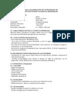 12 Semana. Guía Para La Elaboración de Un Programa de.doc