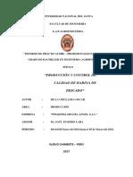 Informe de Prácticas Pre Profesional