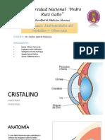 Enfermedades Del Cristalino y Glaucoma