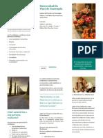 folleto resiliencia