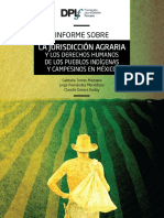 informe_jurisdiccion_agraria_version_final.pdf