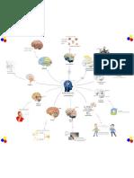 Mapa Mental Partes Del Cerebro