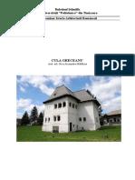 Nica Madalina - Cula Greceanu.pdf
