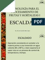 Escaldado_modificado2010.ppt