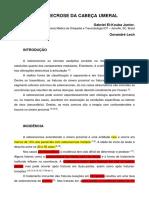 OSTEONECROSE DA CABEÇA UMERAL  - CAPITULO LIVRO SLAHOC