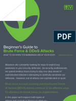 AV-BruteForceAttacks.pdf