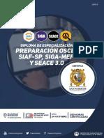 temario_diploma_4c.pdf