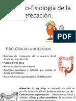 Fisiología de La Defecación