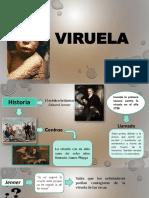 VIRUELA - DIAPOSITIVAS