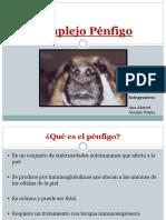Pénfigo - Inmunología veterinaria