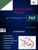 valoracion del torax fetal