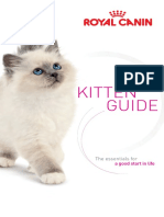 KittenGuide-RCP