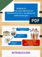 Perfil Modelos Pedagogicos y Teorias de Aprendizaje