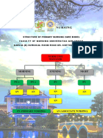 Structure of Primary Nursing Care Model