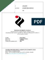 Resume Charubassi 10703025
