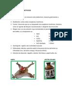 Informe Fisiologia-2 (1)