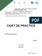 ID_137080_Caiet_Practica.docx