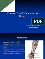 15.Traumatismele pumnului si mainii - Dr.Ouatu Constantin.ppt