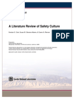 Literature Review Safety Culture
