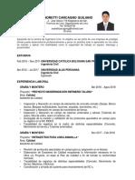 Curriculum Andretti