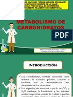 4-METABOLISMO CARBOHIDRATOS P-1 (1).ppt