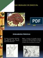 Os Insetos e Seu Papelcomo Alimento Funcional