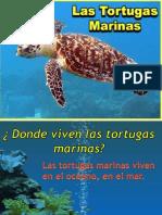 Disertacion Guillermo Las Tortugas