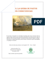 quemapastosguia.pdf