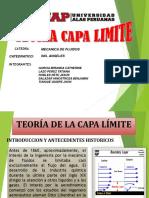 Exposicion Capa Limite 1