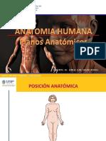 Alergia-Intolerancia Antiinflamatorios Noesteroideos (Aines)-1