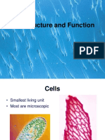 Cell Parts and Function