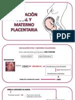 Circulaciòn Fetal y Materno Placentaria
