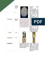reporte pruebas bioquimicas.docx
