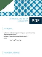 Polynomial and Matrix Calculations
